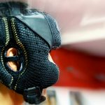 Best Headgear for Boxing, MMA, Muay Thai