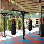 Best Muay Thai Heavy Bags